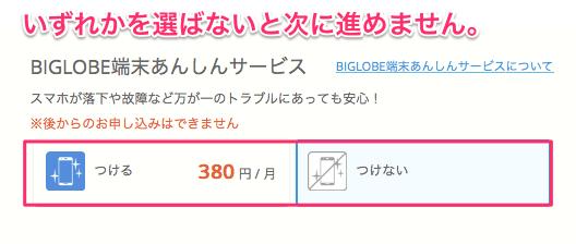 「BIGLOBE端末あんしんサービス」は「つけない」を選ばないと次に進めません。